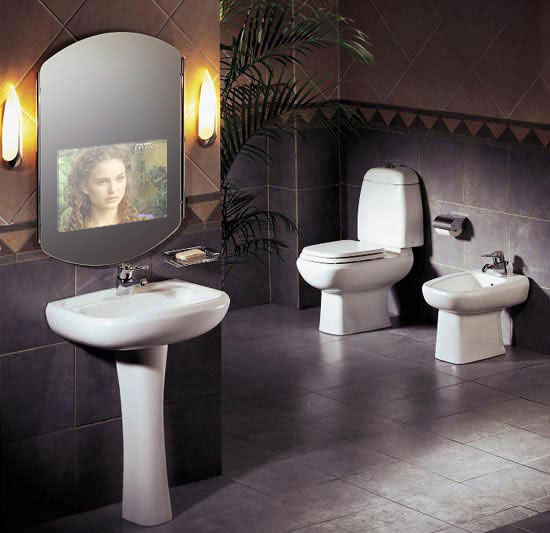 Worlds most expensive house for Tv in bathroom ideas