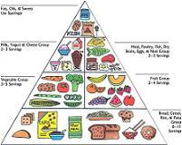 worlds healthiest foods food pyramid